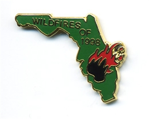 Picture of Florida Wildfires