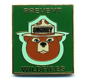 Picture of Prevent Wildfire